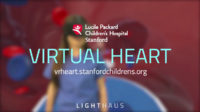 Company Virtual Heart logo